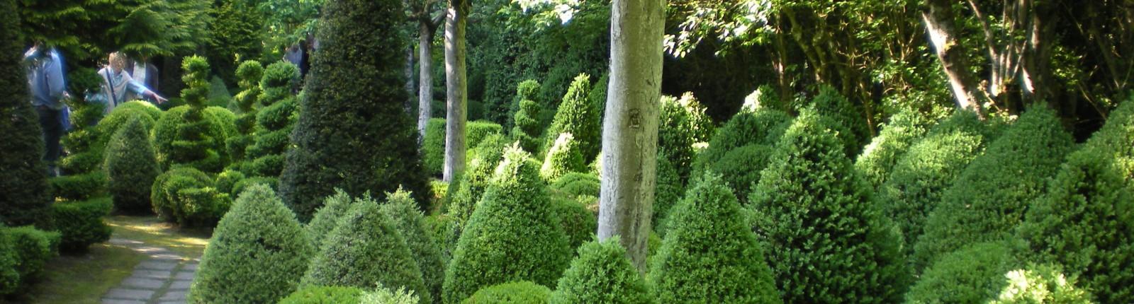 Jardins Séricourt 019 diapo